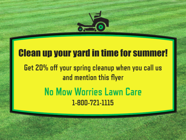 Lawn Care Flyer Example