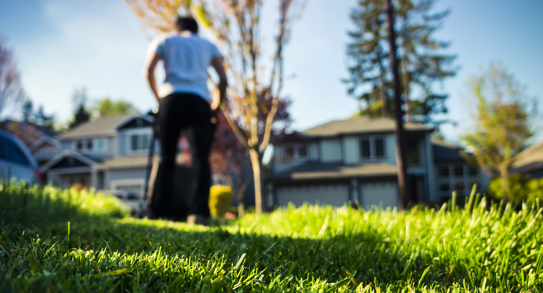 lawn care estimates a how-to guide