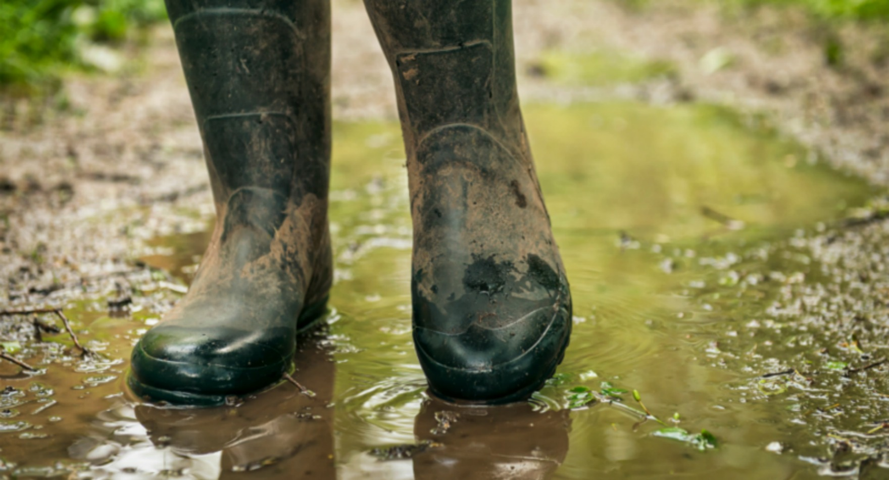 Rainy Day People: 5 Ways Lawn Care People Stay Busy When Business is all Wet