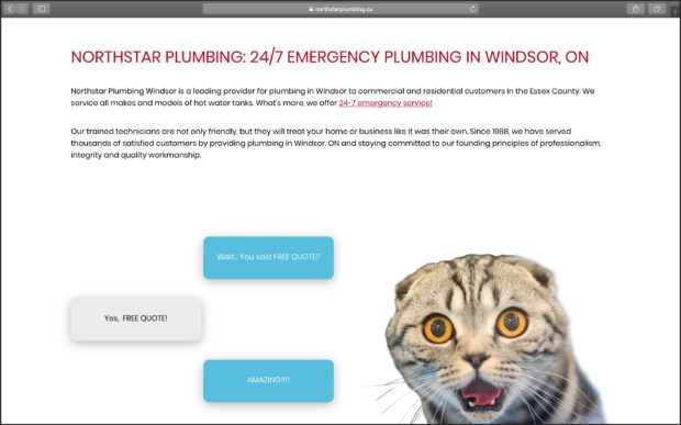 Best Plumbing Websites: North Star Plumbing