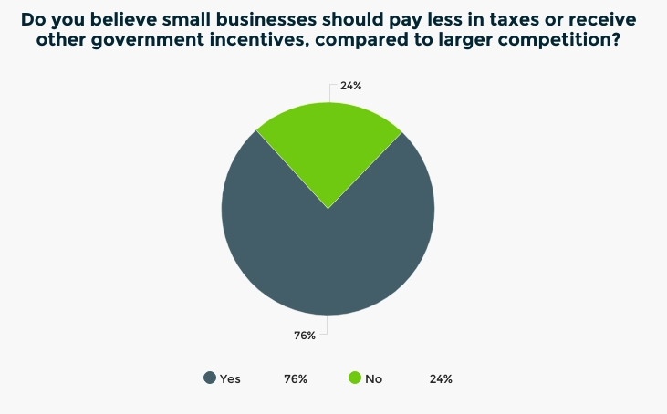 Should small businesses pay less taxes or receive government incentives?