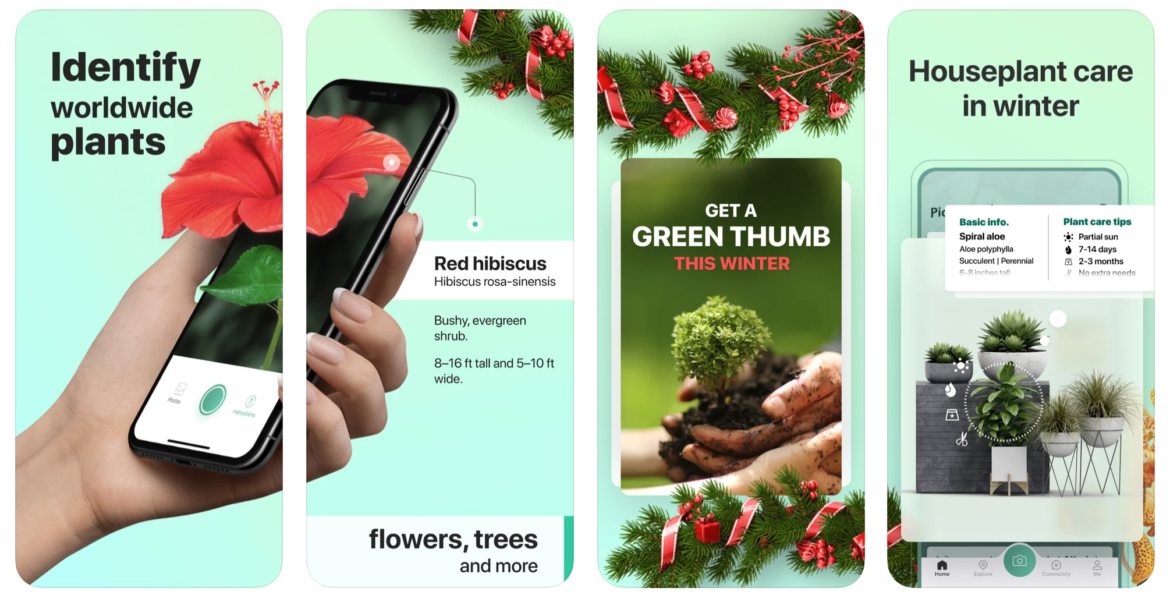 A mobile preview of the lawn care business app PictureThis