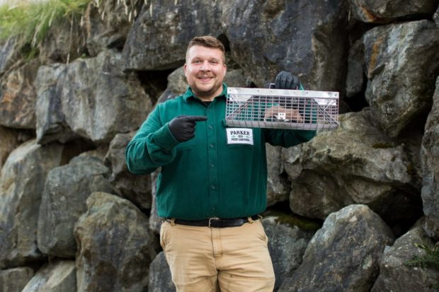 Chris Parker of Parker Eco Pest Control organized his business with Jobber's field service software