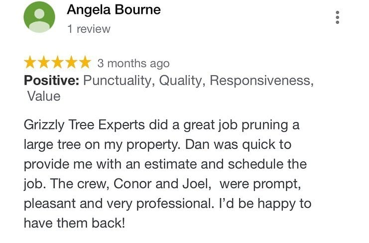 Positive online review tree care business using Jobber