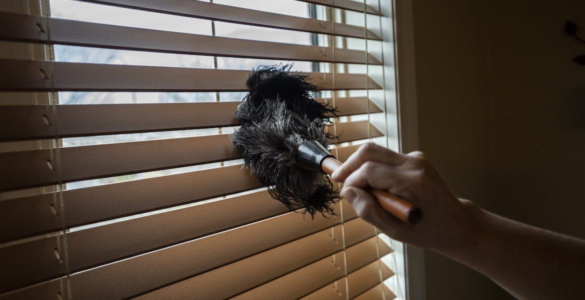 Hand dusting blinds